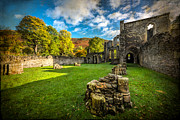 Fall Grass Metal Prints - Autumn Ruins Metal Print by Adrian Evans