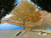 Autumn Photographs Mixed Media - Autumn Season - Hells Canyon by Photography Moments - Sandi
