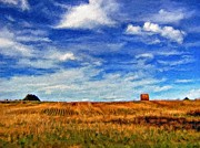 Impasto Photo Posters - Autumn Sky impasto Poster by Steve Harrington