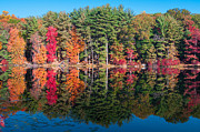 Changing Colors Prints - Autumn Spectacular Print by Anthony Sacco