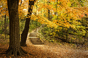Path Posters - Autumn Stairs Poster by Scott Norris