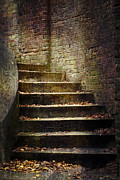 Intrique Prints - Autumn stairway Print by Peter Chadwick
