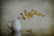 Yellow. Leaves Prints - Autumn still life Print by Diana Kraleva