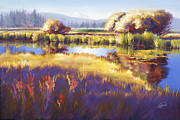 Pat Cross Posters - Autumn Sunriver Poster by Pat Cross