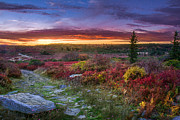 Mary Almond - Autumn Sunset at Dolly Sods