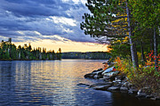Pine Photos - Autumn sunset at lake by Elena Elisseeva