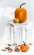 Gourds Posters - Autumn Table Poster by Christopher and Amanda Elwell