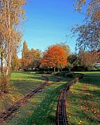 Autumn Tracks Print by Terri  Waters