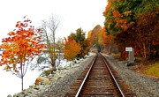 Karen Molenaar Terrell - Autumn Train Tracks