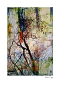 Autumn Tree Composition  Print by Xoanxo Cespon