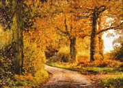 Impressionist Photos - Autumn trees by Pixel Chimp