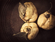 Ripe Photos - Autumn Trio by Amy Weiss