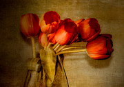 Julie Palencia Digital Art Prints - Autumn Tulips Print by Julie Palencia