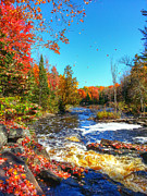 Brook Burling - Autumn View from Big...