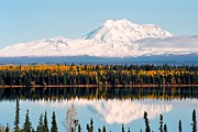 Alaska Lake Prints - Autumn View of Mt. Drum - Alaska Print by Juergen Weiss