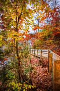 Debra and Dave Vanderlaan - Autumn Walk