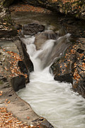 Gouzel - - Autumn water