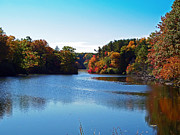 Autumn Waterway Print by Aimee L Maher
