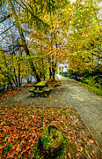 House Digital Art Prints - Autumn Way Print by Adrian Evans