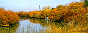 Autumn Weekend On The Delta Print by Joseph Coulombe