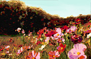 G Linsenmayer - Autumn Wildflowers...