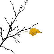 Autumn Winds - Featured 3 Print by Alexander Senin