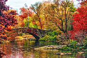 Gapstow Bridge Framed Prints - Autumn Wonderland Framed Print by Nishanth Gopinathan