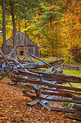 Autumn Farm Scenes Prints - Autumn Wooden Fence Print by Joann Vitali
