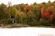 Cabin On A Lake Posters - Autumn Woods Poster by Michael James
