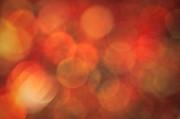 Autumnal Amber Print by Jan Bickerton