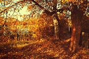 Jenny Rainbow - Autumnal Invitation