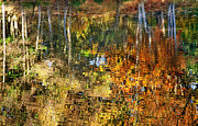 Autumn Photographs Digital Art Acrylic Prints - Autumnal Reflections II Acrylic Print by Natalie Kinnear