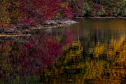 Autumn Foliage Photos - Autumns Color Pallette by Susan Candelario
