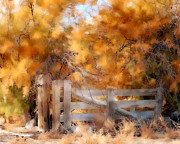 Marcie Adams Eastmans Studio Photography - Autumns Gate