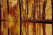 Autumn Photos Originals - Autumns Reflection by Marilyn Giannuzzi