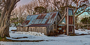 Tin Roof Prints - Autumns Rest Print by Mark Lucey