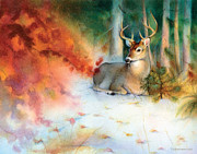Tracy Herrmann - Autumns Rest Mule Deer