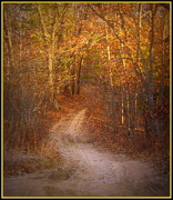 Colors Of Autumn Posters - Autumns Two Track Road Poster by Rosemarie E Seppala