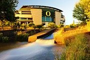 Oregon Ducks Prints - Auzten Stadium- U of O Print by Michael Cross