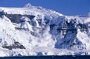 Kevin Schafer - Avalanche-Antarctica