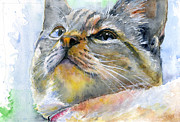 Cats Originals - Avalon Three by John D Benson