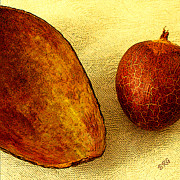 Avocado Digital Art Posters - Avocado Seed And Skin II Poster by Ben and Raisa Gertsberg