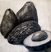 Life Drawings Posters - Avocados Poster by Debi Pople