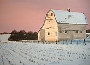 Award-winning Original Acrylic Painting - Nebraska Barn Print by Norm Starks