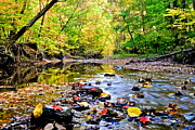 Oak Creek Prints - Awesome Autumn  Print by Robert Harmon