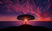 Bess Hamiti - Awesome Sunset