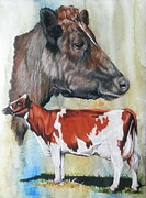 Barbara Keith - Ayrshire Cattle