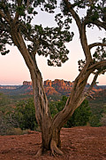Sedona Framed Prints - AZ0019 Sedona Arizona Framed Print by Steve Sturgill
