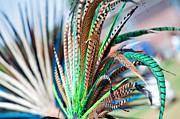 Gwyn Newcombe - Aztecan Ceremony 1