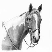 Saddle Paintings - B and W study by Michelle Grant